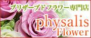 プリザーブドフラワー専門店physalis Flower